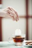 Подготовка чая стоковое фото
