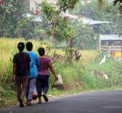 Полевые рабочие риса Стоковое Изображение