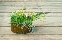 Полевые цветки в старом медном баке Стоковая Фотография