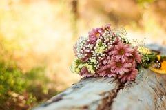 Полевые цветки лежат на дереве в лесе Стоковая Фотография RF