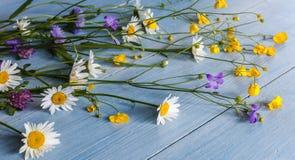 Полевые цветки на деревянной предпосылке Стоковая Фотография