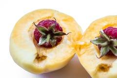 2 поленики в изолированном абрикосе части, Стоковая Фотография RF
