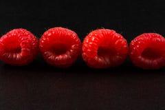 поленики фронта фокуса глубины крупного плана ягод отмелые Стоковое Фото
