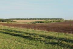 Полдень фото поля русского стоковое изображение