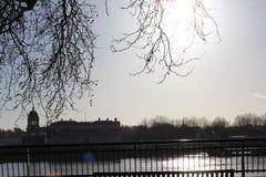 Под деревом во время зимы рекой Темзой Стоковое фото RF