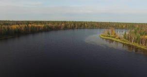Полет над ландшафтом с сочной зеленой листвой сток-видео