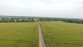 Полет над пшеничным полем в заходе солнца вид с воздуха сток-видео