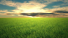 Полет над травой, заход солнца, cloudscape акции видеоматериалы