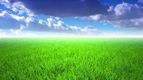 Полет над травой, cloudscape сток-видео
