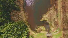 Полет трутня взгляд сверху через Eutersee сток-видео