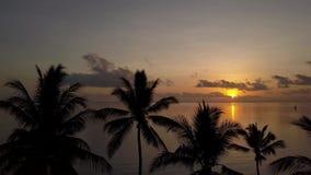 Полет трутня восхода солнца видеоматериал