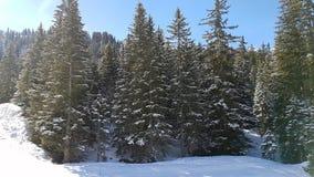 Полет трутня над горами Snowy Стоковые Фотографии RF
