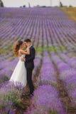 Поле лаванды свадьбы Стоковое Изображение RF