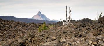 Поле лавы ряда каскада Mt Вашингтона пропуска Mckenzie старое Стоковая Фотография RF