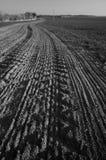 Поле в черно-белом Стоковые Фотографии RF