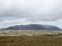 Поле горы Стоковые Фото