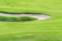 Поле гольфа зеленое Стоковые Изображения