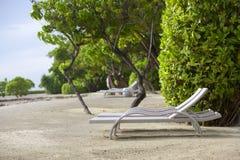 поле глубины стулов пляжа отмелое очень Стоковое Фото