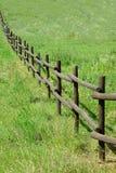 Поле загородки деревянное зеленое Стоковые Изображения RF
