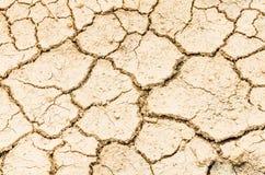 поле засухи Стоковая Фотография