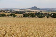 поле земли сельской местности чехословакское вспахало республику сельскую стоковое изображение