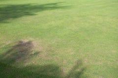 Поле зеленой травы играть спорта Стоковые Фотографии RF