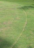 Поле зеленой травы играть спорта Стоковое фото RF