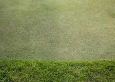 Поле зеленой травы играть спорта Стоковые Изображения