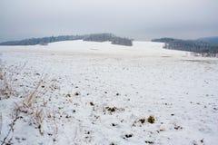 Поле зимы в холмах Стоковая Фотография