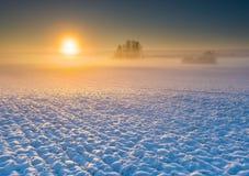 Поле зимы на восходе солнца Стоковое Изображение