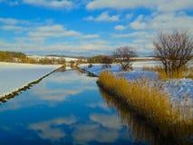 Поле зимы с снегом Стоковые Фото