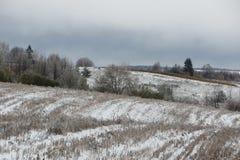 Поле зимы Стоковое Изображение