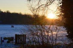 Поле имущества зимы захода солнца Стоковое фото RF
