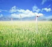 Поле и ветротурбины риса Стоковое Фото