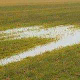 Поле и вода Стоковое фото RF