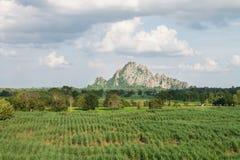 Поле и гора scape земли Стоковое Изображение