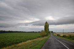 поле как раз Стоковая Фотография