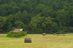 Поле круглых связок сена около старого амбара и зеленого леса Стоковое Фото