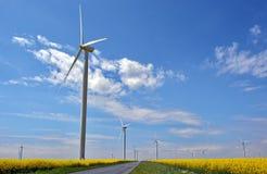 поле насилует ветер турбин Стоковые Изображения