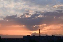 Поле на зоре Стоковая Фотография RF