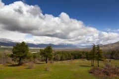 Поле облака Стоковая Фотография RF