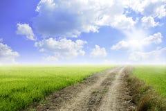 Поле дороги Стоковое Изображение RF