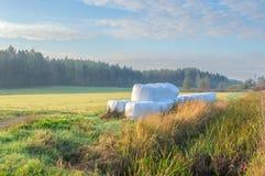 поле осени Стоковое Изображение