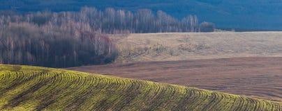 поле осени Стоковые Фотографии RF