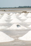 Поле лотка соли Стоковые Изображения RF
