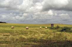 Поле после сбора зерна перед штормом Стоковое фото RF