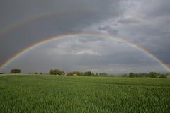Поле радуги зеленое Стоковые Фотографии RF