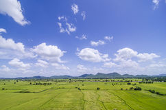 Поле риса и гора и голубое небо Стоковые Изображения RF