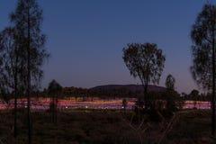 Поле света, Uluru, северных территориев, Австралии под s Стоковые Изображения
