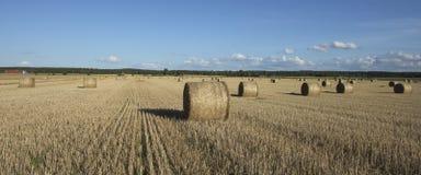 Поле связок сена Стоковые Изображения